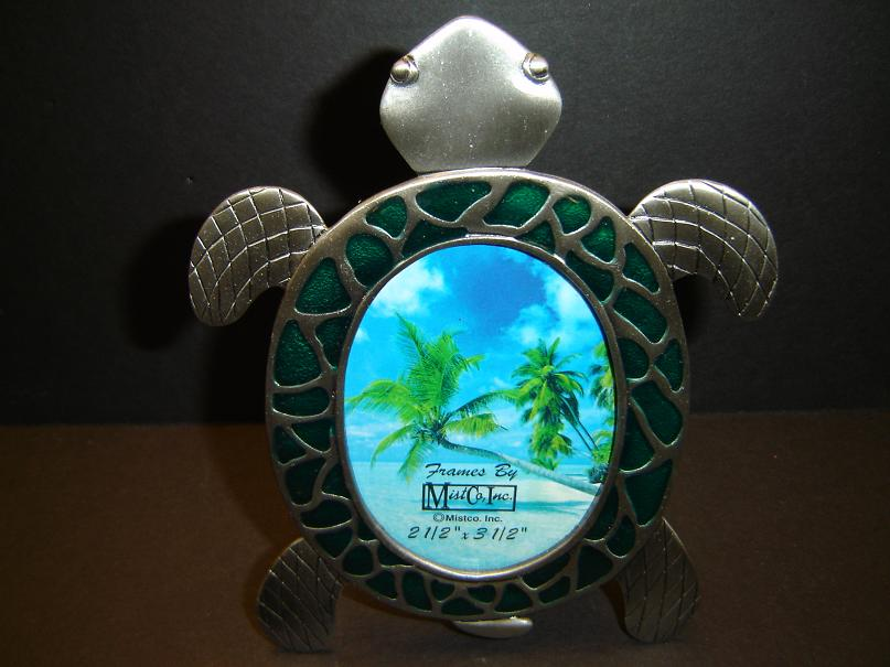 Sea Turtle And Turtle Gifts And Merchandise For Men Woman